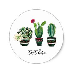 cactus succulent watercolor fiesta mexican classic round sticker #succulent #stickers #labels #succulents #cactus Succulent Tattoo, Cactus Tattoo, Cactus Stickers, Round Stickers, Venus Tattoo, Succulent Images, Fly Traps, Small Succulents, Pin Up Art