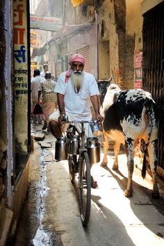 A small street in Varanasi.This man on his bike go to the Milk market. the supplier of milk walks away !