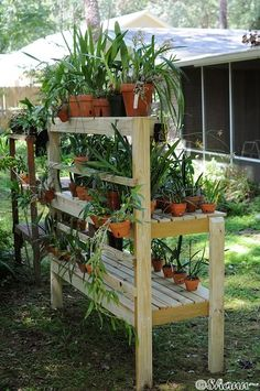 how to make orchid shade house with PVC - Google Search