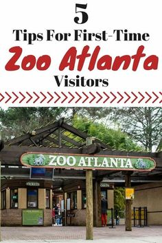 Tips for planning a successful first-time visit to Zoo Atlanta with your family: The programs they offer, special events and what you can't miss! #VacationsIdeas