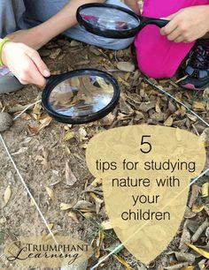 Do you feel inadequate to study nature with children? Here are five tips that helped us begin to study nature one baby step at a time. Winter Outdoor Activities, Nature Activities, Science Activities, Science Labs, Camping Activities, Science Ideas, Camping Hacks, Outdoor Learning, Outdoor Play