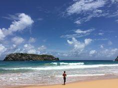 Praia do leão, Fernando de Noronha, Brazil. #fernandodenoronha #noronha #praiadoleao #nordeste #brazil