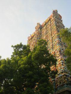 Pilgrimage to Tiruvannamalai (India)  Photo: Kjersti Siem