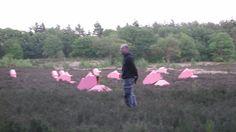 Kunstroute Schoonoord 2011