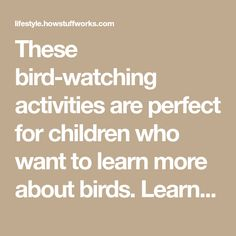 These bird-watching activities are perfect for children who want to learn more about birds. Learn more about these inventive bird-watching activities.
