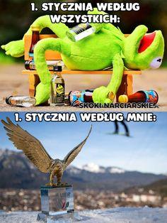 Ski Jumping, Innsbruck, Skiing, Minecraft, Dinosaur Stuffed Animal, Pokemon, Lol, Humor, Memes