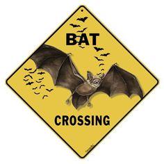 Bat Crossing 2