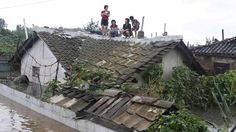 Residents wait on the roof of a flooded building in Anju City, South Phyongan Province, North Korea Monday, July 30, 2012. Officials said 1,000 houses and buildings were destroyed and 2,300 hectares of farmland were completely submerged in the city. Photo by Kim Kwang Hyon