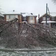 toronto ice storm - Google Search Ice Storm, Toronto, Google Search, Outdoor, Outdoors, Outdoor Games, Outdoor Life