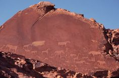 Petroglyphs of animals at a site near Twyfelfontein, Namibia. They are thought to have been made by local tribespeople and no date of their creation is available. Image by Liz Leyden