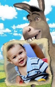 Burro de Shrek para decorar foto