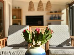 Protea flowers in blue vase on natural table