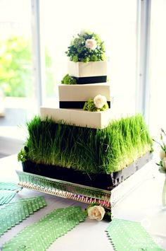 "Beautiful idea! This can easily been done at home. Just go to your local home improvement store and pick up some grass seed (wheat grass preferred), an oversized pan to be slightly larger than your cake stand, and some planting soil.  Put the planting soil in your pan, sprinkle some grass seed over the soil, water and watch it grow!  Lastly, cover the pan's edges with some ribbon to match your wedding colors.  Voila!  You have a fabulous and ""green"" eco-friendly covering for your cake stand!"