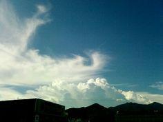 [뭉게구름/cumulus/云团] 입김을 호호 불어 / 하늘을 뽀드득 닦아 냅니다. / 어느 님이 불었을까요, / 저 하얗고도 보드라운 입김을... / #kiss7.kr #breath #wipe #입김 #닦다