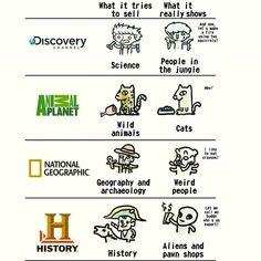 TV these days... - Imgur