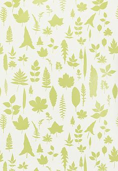 Wallcovering / Wallpaper | Leaves in Chartreuse | Schumacher.  Love this in grey.