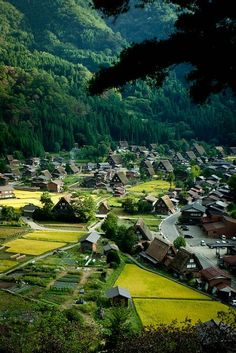 The World Heritage, Shirakawa village, Gifu, Japan