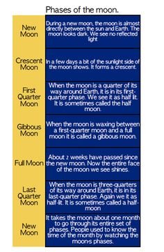 Astronomy: The Moon Phases