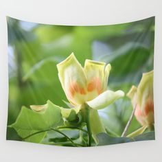 Available in three distinct sizes, our Wall Tapestries are made of 100% lightweight polyester with hand-sewn finished edges. Featuring vivid colors and crisp lines, these highly unique and versatile tapestries are durable enough for both indoor and outdoor use. Machine washable for outdoor enthusiasts, with cold water on gentle cycle using mild detergent - tumble dry with low heat. #tulip #tree 15% Off + Free Shipping on Tapestries Today! #sale