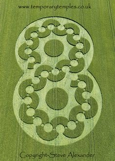 Crop Circle 16th June 2010 at Chirton Bottom, Wiltshire, UK