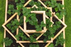 How to Build a Strawberry Planter - Dunn DIY Looking for some strawberry planter ideas? Instructions to build a DIY strawberry planter, a great way for growing berries without taking up too much space. Strawberry Planters Diy, Strawberry Box, Strawberry Garden, Strawberry Plants, Strawberry Daquiri, Grow Strawberries, Strawberry Cheesecake, Strawberry Blonde, Wooden Planters