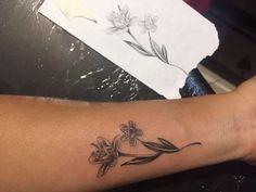 Tatto Erythoxylum Botanytatto