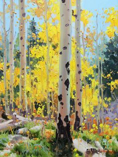 Colorado Art - Aspens in Golden Light by Gary Kim Watercolor Trees, Watercolor Landscape, Landscape Art, Landscape Paintings, Landscapes, Forest Painting, Autumn Painting, Light Painting, Painting Art