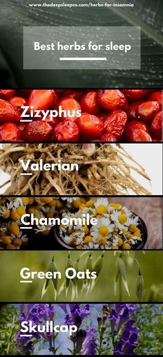 Natural Sleep Remedies Herbs are powerful allies in the fight against insomnia and they have a long history of helping us sleep better and feel better. Treating Insomnia, Insomnia Causes, Insomnia Remedies, Natural Sleep Remedies, Natural Cures, Natural Healing, What Helps You Sleep, Sleep Help, How To Get Sleep
