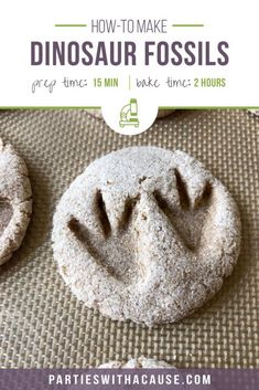 How to make DIY salt dough dinosaur fossils with your kids. An easy and educational dinosaur craft for kids perfect for a Dino Dig activity. #dinosauractivity #dinosaurcraft #summercamp