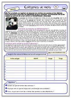 Evaluations en grammaire et vocabulaire, période 1 (avec du CE2 dedans ;-) ) | Evaluation ...