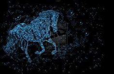 Star Horse Power