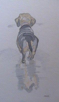Dachshund Clube - Jacques Truphemu #dachshund Clube - Jacques Truphemus