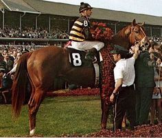 Majestic Prince (3/19/1966- 4/22/1981) Thoroughbred racehorse chestnut stallion sired by Raise a Native. One of the leading North American horses of his generation, he won the Kentucky Derby and Preakness Stakes in 1969. The victory made Majestic Prince the first unbeaten Kentucky Derby champion in 47 years. Johnny Longden became the only person in history to ever win the Derby both as a jockey and as a trainer, a feat that as of 2009 has not been matched.