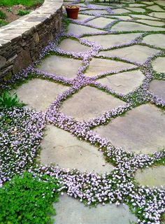 Wie man die robuste Schönheit zum Hinterhof-Steingarten holt How to bring the rugged beauty to the backyard rock garden Garden Cottage, Diy Garden, Dream Garden, Garden Projects, Garden Steps, Garden Paving, Shade Garden, Night Garden, Garden Ideas Pathways