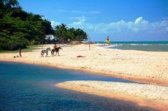 Pitinga Beach - Arraial D'Ajuda - Bahia, BRASIL