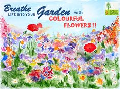 Breathe life into your #garden with #colorful #flowers !! #gardendesigns #designs #colourfulflowers #gardening