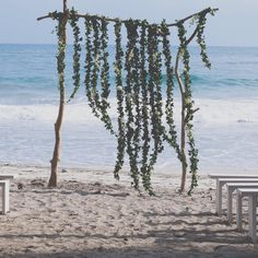 Beach weddings inspi