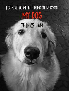 """I strive to be the kind of person my DOG thinks I am. Who do you know that needs to be motivated, appreciated or uplifted? Colorful Motivational Posters for yourself, for wall decor, offices, classrooms, birthdays, anniversaries, milestones and as awesome gifts. We now offer 3 SIZES! • STANDARD (11""""x 14"""") • LARGE(16""""x 21"""") • EXTRA LARGE (23""""x 30"""") Sorry - Not all images come in Extra Large. We now have over 200 posters available with more coming each month. Artist Jan Riley shares her..."""