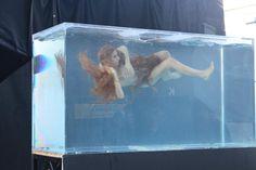 Living Art Aquatic Design can make an aquarium big enough to hold even a mermaid! Mermaid History, Entertainment Jobs, Iphone Wallpaper Video, Underwater Photos, Next Top Model, Art Of Living, The Past, Photoshoot, Mermaids