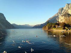 Panorama - Lake Como | #lakecomo #Lagodicomo #Italy #panorama #view
