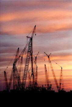Gulf Coast cranes