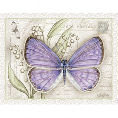 Lavender Butterfly Boxed Notecard - Let other's know to keep an eye out for spring butterfly's with Jane Shasky's nature art boxed notecard.