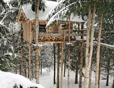 I vote yes on this rustic cabin treehouse! How about you?