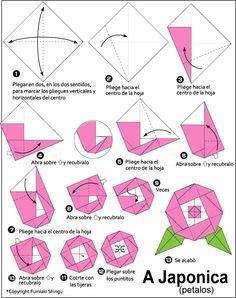 Origami Camellia Japonica