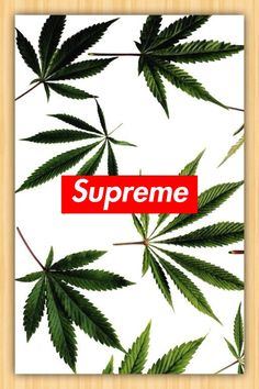Supreme iPhone5 Wallpapers by The G Paradise