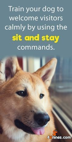 Begin by showing your dog a spot near the door where they must sit and stay, then reward them when they sit calmly in that spot. You'll want to reinforce this specific behavior on a daily basis when people, including yourself, enter your home. It will take more time with energetic dogs, but it will be well worth the effort! @KaufmannsPuppy