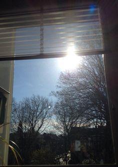 Genietmomentje 8/365; achter mijn bureau maar heerlijk in de zon