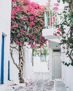 Wednesday Wanderlust! #santorini #greekislands #inspiration #summer #europe