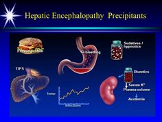 Hepatic encephalopathy precipitants