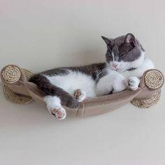 de6a62485d8e20 Cat Hammock - Wall Mounted Cat Shelf - Tan. Parco Giochi Per GattiStanza ...